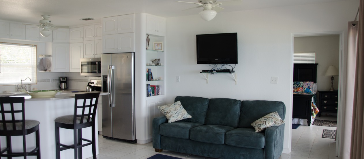 Common area with Queen Sleeper/Sofa, TV, DVD, read, enjoy!